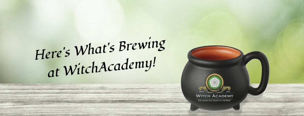 What's Brewing at Witch Academy